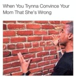 When You Trynna Convince Your...