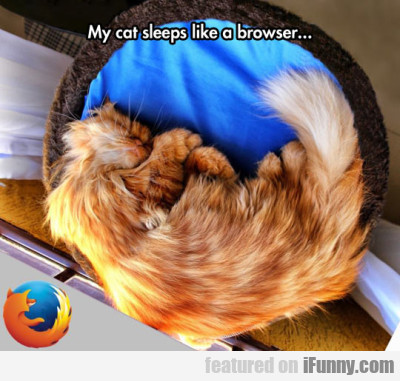 My Cat Sleeps Like A Browser...