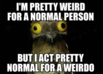 I'm Pretty Weird For A Normal Person...