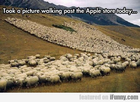 took a picture walking past the apple