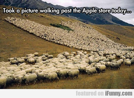 Took A Picture Walking Past The Apple Store...