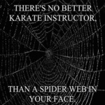 There's No Better Karate Instructor...