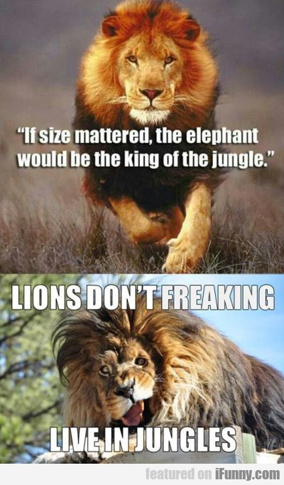 If Size Mattered, The Elephant Would Be King..