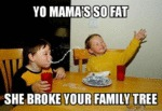 Yo Mama's So Fat...