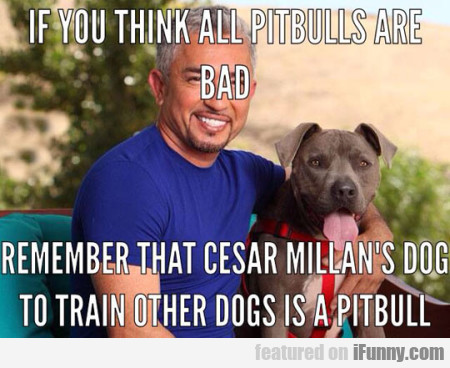 if you think all pitbulls are bad