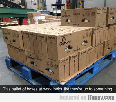This Pallet Of Boxes...