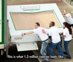 This Is What 1.2 Million Calories...