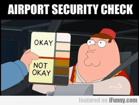Airport Security Check...