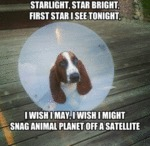 Starlight, Star Bright, First Star