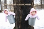 How Babies Are Born In Canada...