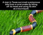 A Man In Texas Survived A Multiple Choice...