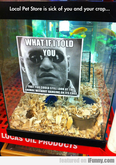 Local Pet Store Is Sick Of You And Your Crap...