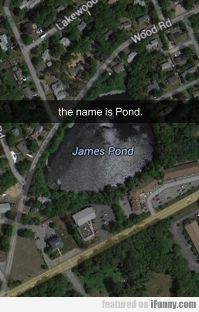The Name Is Pond, James Pond...