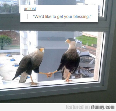 we'd like to get your blessing