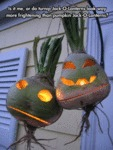 Is It Me Or Do Turnip Jack O Lanterns...