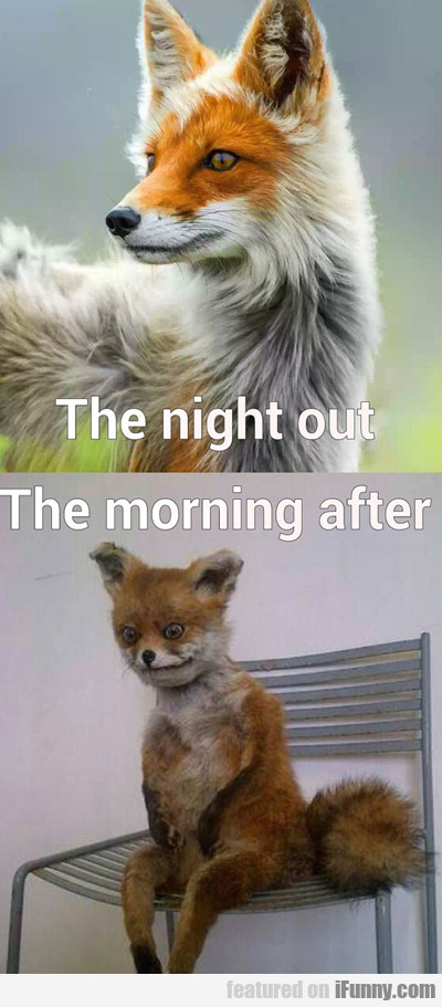 The Night Out Vs The Morning After...