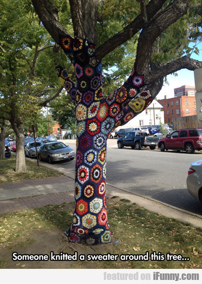 Someone Knitted A Sweater Around This Tree...