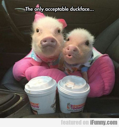 The Only Acceptable Duckface...