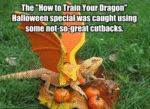 The How To Train Your Dragon