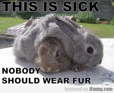 This Is Sick Nobody Should Wear Fur