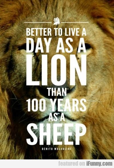 Better To Live A Day As A Lion