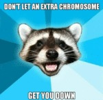 Don't Let An Extra Chromosome...