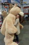 We Got Our 92 Inch Costco Bears...