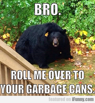 Bro, Roll Me Over Your Garbage...