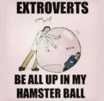Extroverts Be All Up In My Hamster