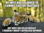 My Wife And I Planned To Commit Suicide Together