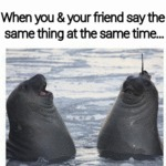 When You And Your Friend Say The Same Thing...