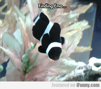 Finding Emo...