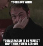 Your Face When Your Sarcasm Is So Perfect...