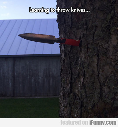 Learning To Throw Knives...