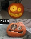 Meth, Not Even Once...