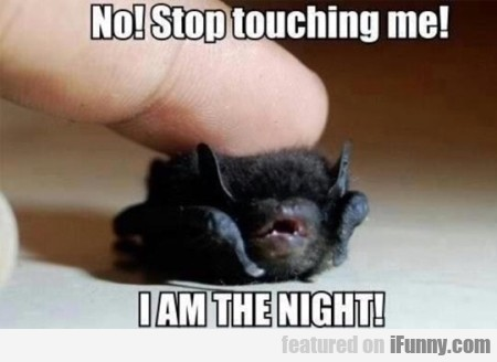 No Stop Touching Me I Am The Night