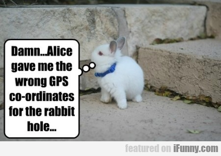 Damn Alice Gave Me The Wrong