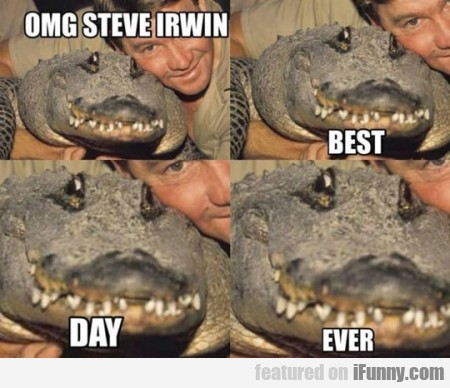 Omg Steve Irwin Best Day Ever