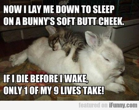Now I Lay Me Down To Sleep On A Bunny's Spft