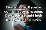 Dear Sneeze, If You're Going To Happen...