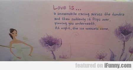 Love Is A Snowmobile