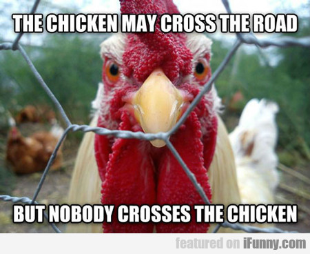the chicken may cross the road...
