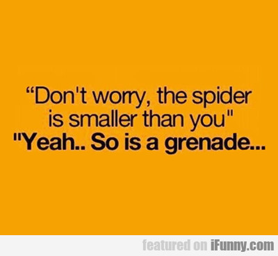 Don't Worry, The Spider Is...