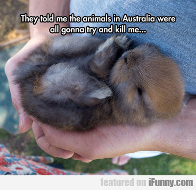 They Told Me The Animals In Australia Were...