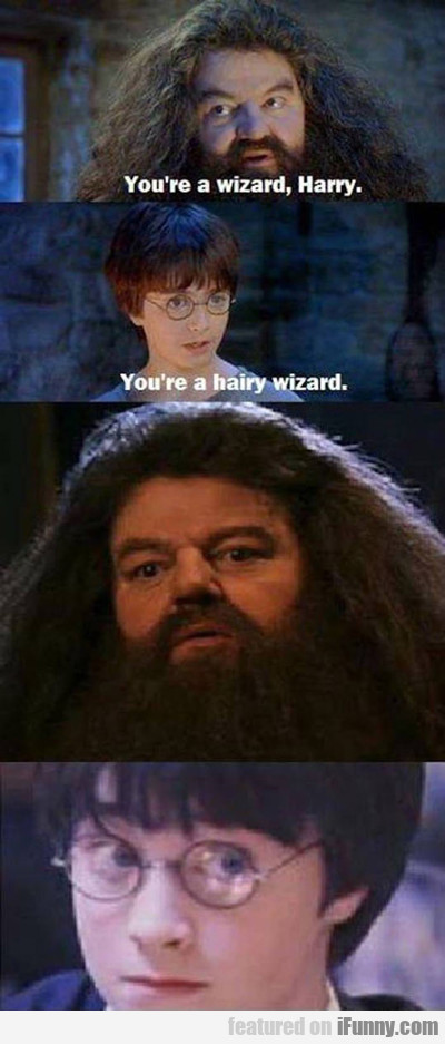 You're A Wizard Harry...