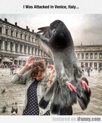I Was Attacked In Venice Italy...