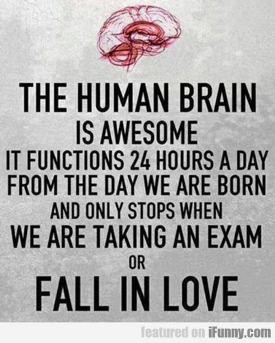 The Human Brain Is Awesome...