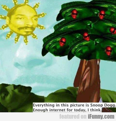 Everything In This Picture Is Snoop Dogg...
