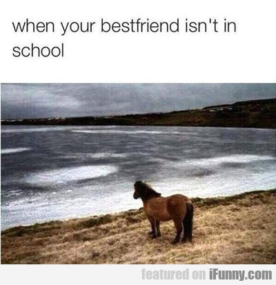 When Your Best Friend Isn't In School...