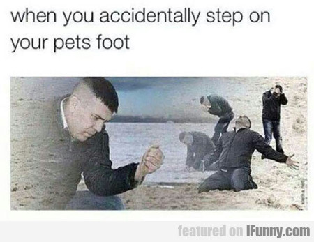 When You Accidentally Step On Your Pet's Foot...